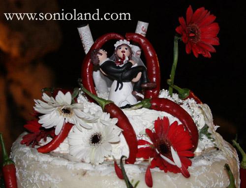Matrimonio Tema Peperoncino : Addobbo stravagante organizzazione matrimonio forum